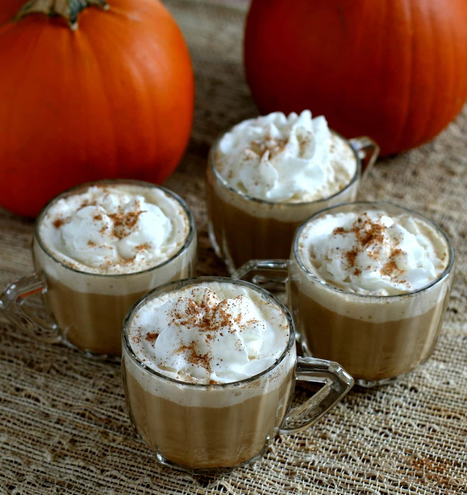 Slow Cooker Pumpkin Spice Lattes - The Magical Slow ...