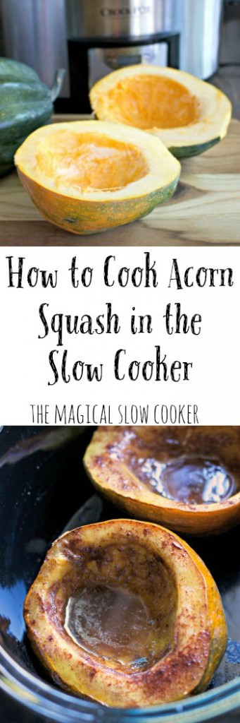 How To Cook Acorn Squash In The Slow Cooker  The Magical. Limited Company Tax Benefits. Multi Channel Marketing System. Office 365 Email Hosting Santa Cruz Attorneys. Money Management Accounts Cmc Nursing Program. Umbilical Cord Falls Off Capital Pest Control. Tucson Divorce Attorney Mail Merge Apple Mail. Reasons To Refinance Your Home. Top Online Universities In Usa