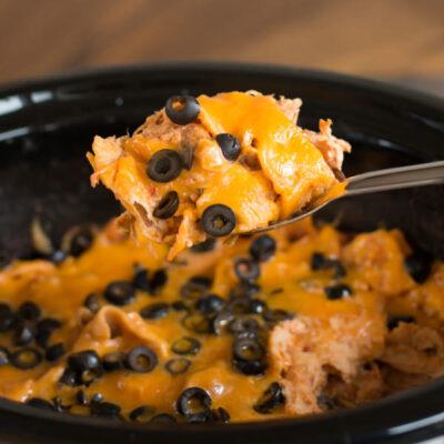 Chicken, Salsa and Cream Cheese Enchiladas