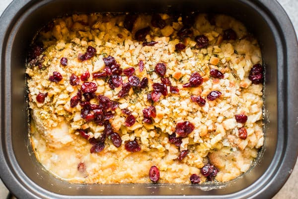 close up of chicken, gravy, stuffing and dried cranberries