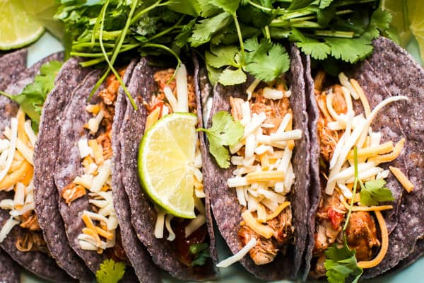 tacos filled with shredded chicken with cheese on top.
