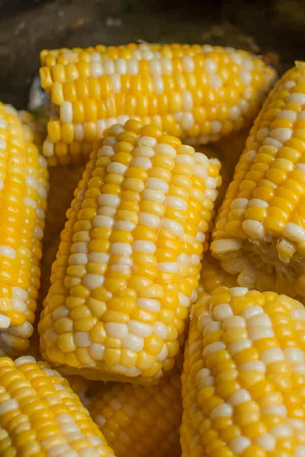 close up of corn on the cob in slow cooker, cooked