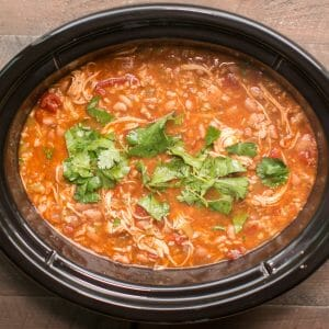 tomato based chicken soup in slow cooker